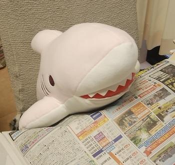 shark-p2.jpg